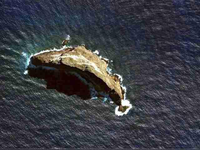Οι επιστήμονες έκαναν μια ανακάλυψη σε αυτό το μικροσκοπικό νησί που συγκλόνισε τους Ζωολόγους