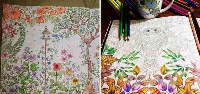 Ζωγραφίζει βιβλία με εικόνες για να ζωγραφίζουν οι ενήλικες. Και έχει ήδη πουλήσει εκατομμύρια αντίτυπα