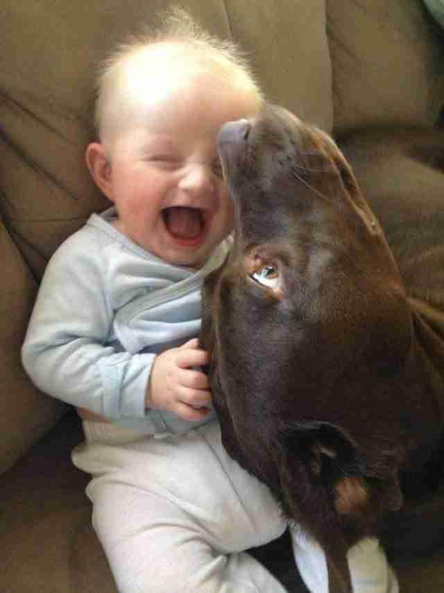 Αυτό το μωρό που ξεκαρδίζεται με αυτά που κάνει ο καλύτερος του φίλος!