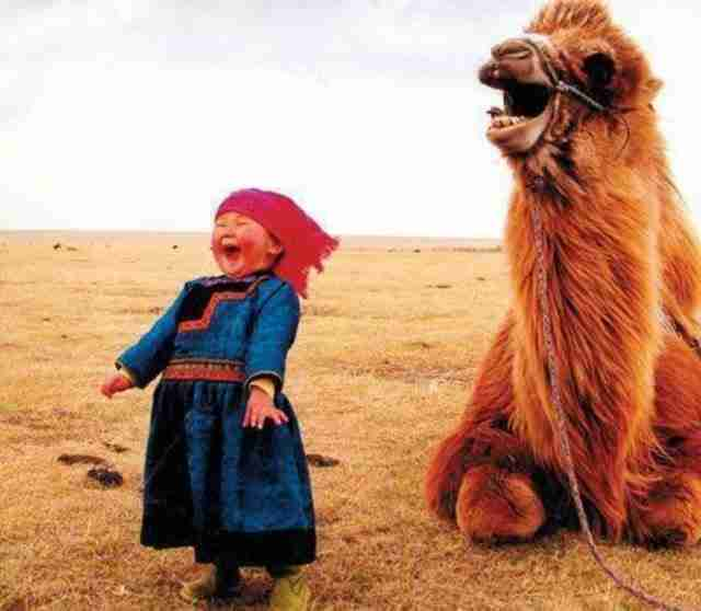 Αυτό το μικρό κορίτσι στη Μογγολία, που μοιράζεται μια ευτυχισμένη στιγμή με τη καμήλα της