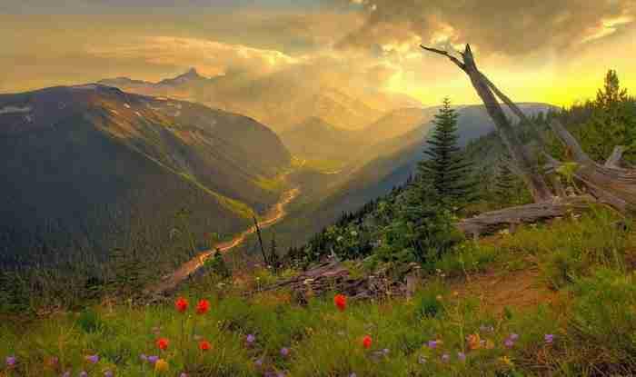 Όρος Rainier - Ουάσιγκτον