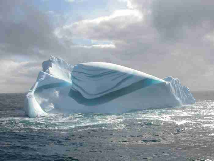 Ριγέ παγόβουνα, Ανταρκτική