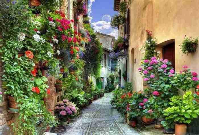 Spello, Umbria, Ιταλία