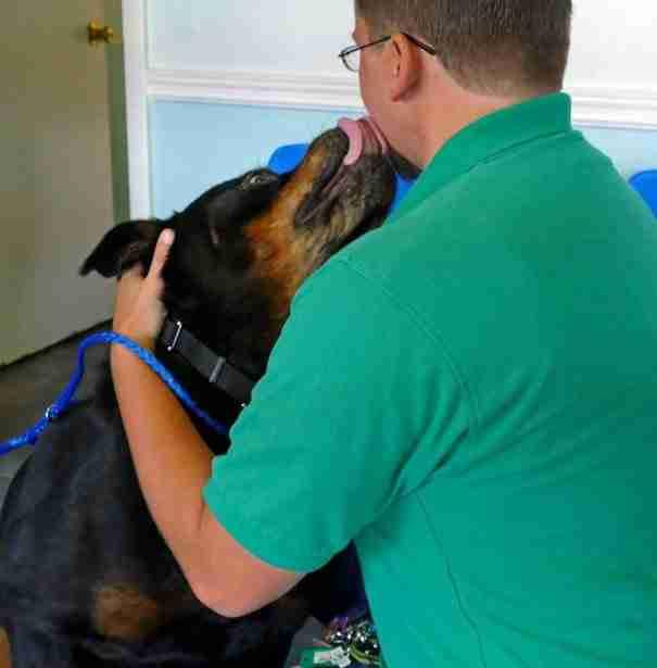 Σκύλος έπειτα από οκτώ χρόνια συναντά ξανά τον ιδιοκτήτη του! Δείτε την αντίδραση του..