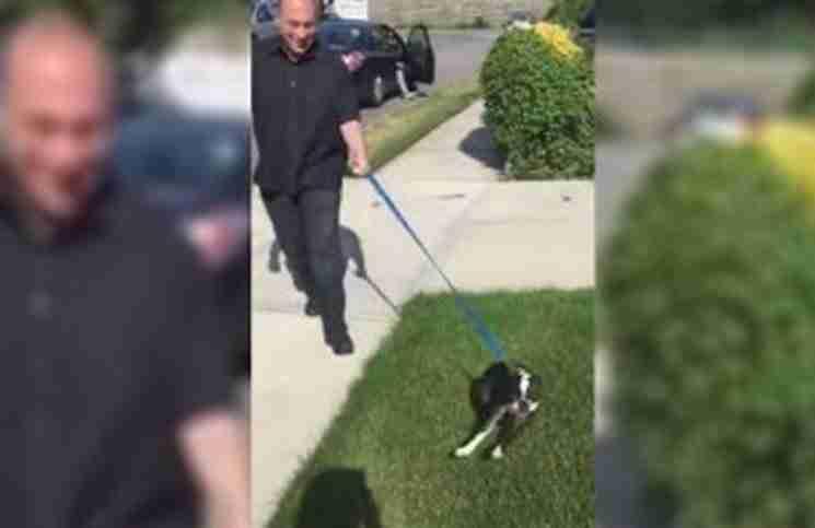 Ο σκύλος του βγήκε να τον αναζητήσει και χάθηκε. Παρακολουθήστε τι συνέβη όταν τον βρήκε ξανά!
