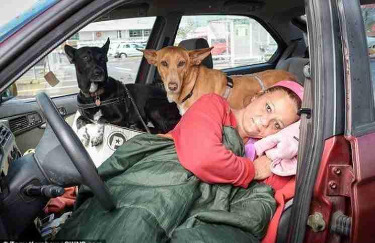 Μια δασκάλα επιλέγει να μείνει άστεγη για να μην εγκαταλείψει τα σκυλιά της!