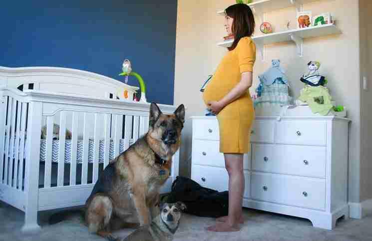 Κατέγραψαν όλη την εγκυμοσύνη της. Αυτό που συμβαίνει όταν ήταν στο νοσοκομείο θα σας συγκινήσει