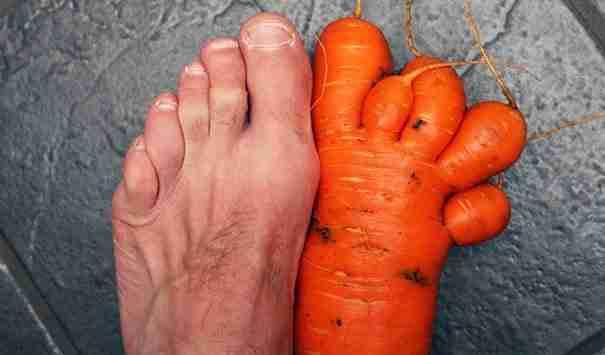 Ένα καρότο που θυμίζει πόδι! Έχει και το κατάλληλο μέγεθος!!