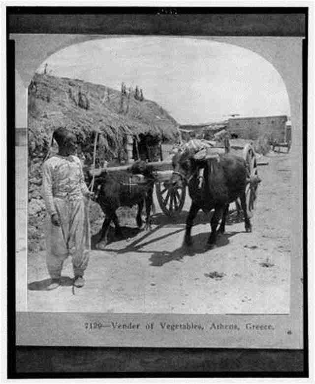 Μανάβης στην Αθήνα – 1905