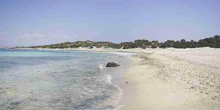 Η παραλία του νησιού Χρυσή (Γαϊδουρονήσι) στην Κρήτη με την κατάλευκη άμμο από… κοχύλια.