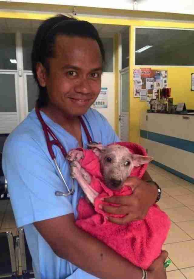 Μια ιατρική ομάδα εργάστηκε όλο το εικοσιτετράωρο για να δώσει στην Κέλσι όλη την φροντίδα και την επίβλεψη που χρειάζονταν.