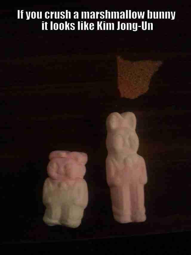 Αν φάτε τα αυτιά και τα πόδια ενός ζαχαρωτού κουνελιού, αυτό που μένει δεν μοιάζει με τον διάσημο Βόρειοκορεάτη Kim Jong-Un;