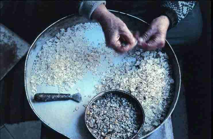 Ως «Παραδοσιακό φάρμακο φυτικής προέλευσης» αναγνωρίστηκε η μαστίχα Χίου