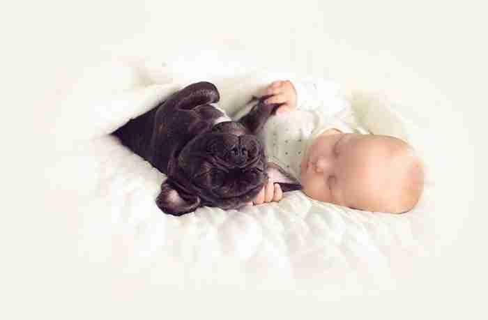 Ένα μωρό και ένα μπουλντόγκ που γεννήθηκαν την ίδια μέρα μεγαλώνουν σαν αδέρφια