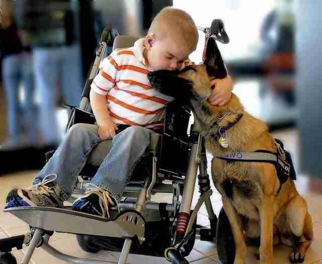 Ο Λούκας Χέμπρε και ο σκύλος του Τζούνο μοιράζονται μια όμορφη στιγμή