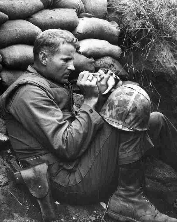 Ο λοχίας Φρανκ Πρέιτορ ταΐζει ένα δυο μόλις εβδομάδων γατάκι, την Μις Χαπ