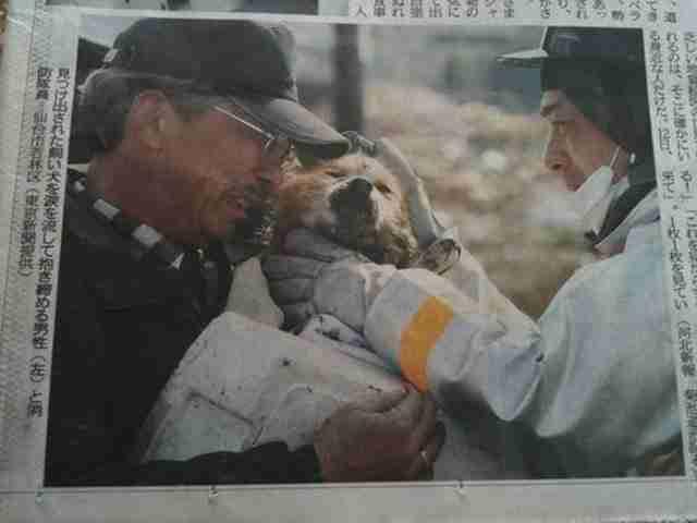Ένας σκύλος συναντά ξανά τον ιδιοκτήτη του μετά το τσουνάμι που έπληξε την Ιαπωνία το 2011
