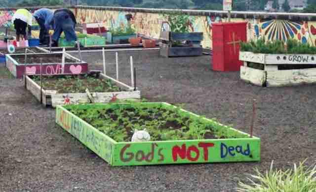 Άστεγοι έφτιαξαν τον δικό τους κήπο και παρέχουν τρόφιμα σε ένα ολόκληρο καταφύγιο αστέγων
