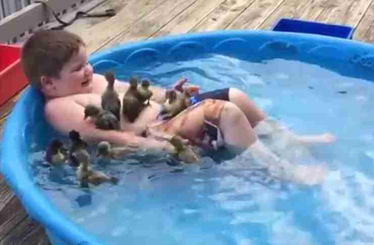 Αυτό το αγοράκι στη πισίνα με τα παπάκια είναι ότι πιο χαρούμενο θα δείτε σήμερα!