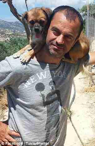 Οδοντίατρος από την Κρήτη παράτησε τη δουλειά του για να φροντίζει αδέσποτα...