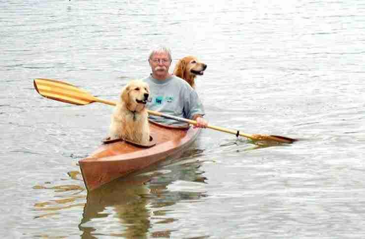 Τροποποίησε έτσι το κανό του ώστε να μπορεί να πηγαίνει πάντα βόλτα με τα σκυλιά του..