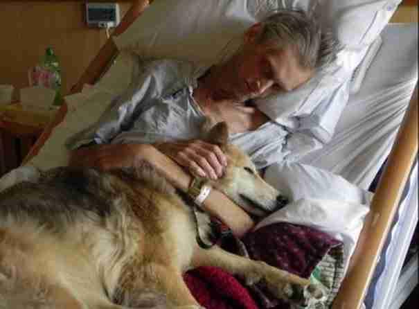 Πήγε στο νοσοκομείο και ξάπλωσε στο κρεβάτι του ιδιοκτήτη του. Αυτό που συνέβη στη συνέχεια..