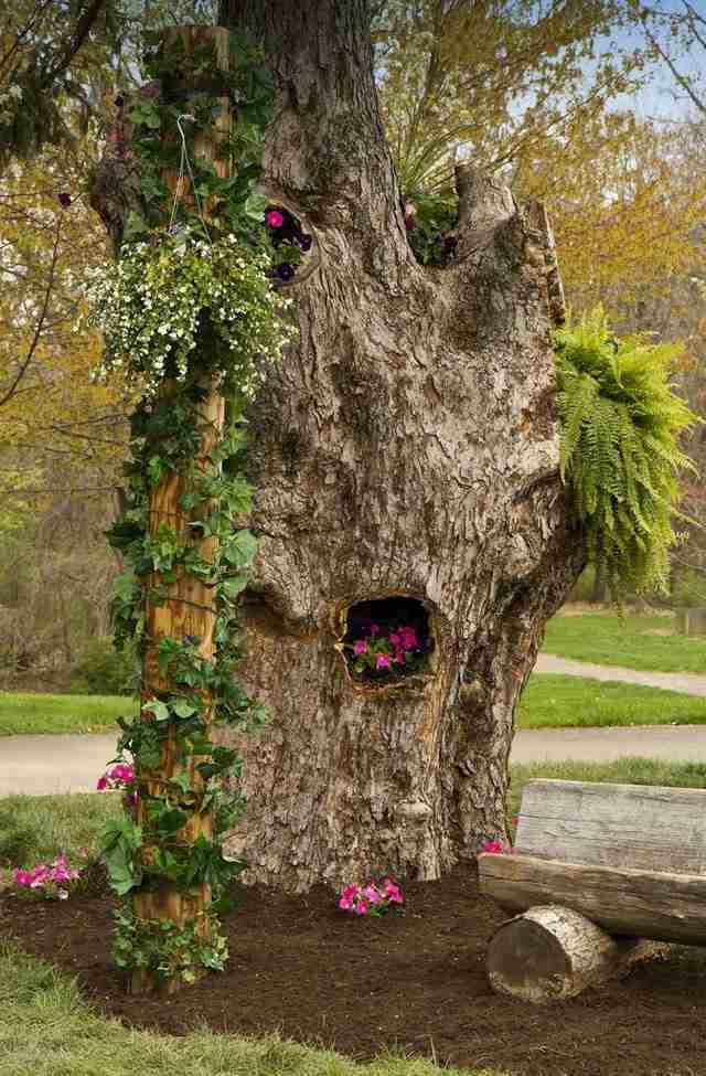 21 φωτογραφίες με κορμούς δέντρων που μεταμορφώθηκαν σε πανέμορφες γλάστρες..