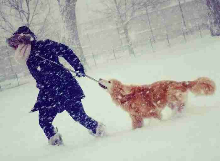Τη στιγμή που πετούσε τις στάχτες του σκύλου της, ένας φίλος τη φωτογράφισε. Προσέξτε τη φωτογραφία!