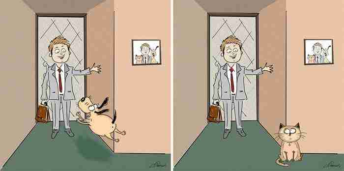 Γάτες και Σκύλοι: Οι βασικές διαφορές τους σε 6 ξεκαρδιστικές εικονογραφίες..