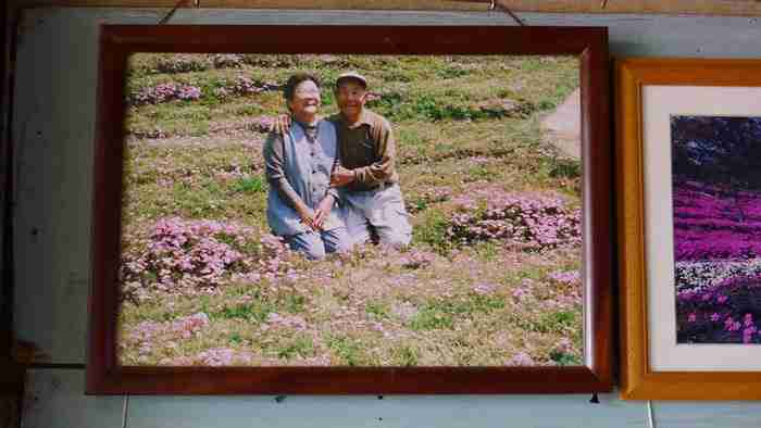 Αποτέλεσμα εικόνας για Πέρασε 2 χρόνια φυτεύοντας χιλιάδες λουλούδια για να τα μυρίζει η τυφλή σύζυγός του