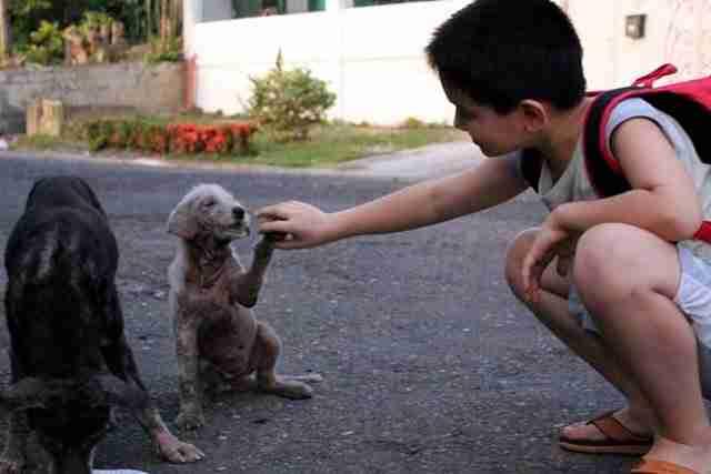 Επειδή ο γιος του έφευγε κρυφά κάθε μέρα από το σπίτι, αποφάσισε να τον ακολουθήσει..