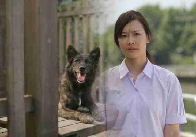Αυτή η διαφήμιση με πρωταγωνιστές μια κοπέλα και ένα σκύλο έχει συγκινήσει το διαδίκτυο