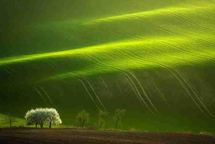 Υπέροχες εικόνες από την φύση της Τοσκάνης!