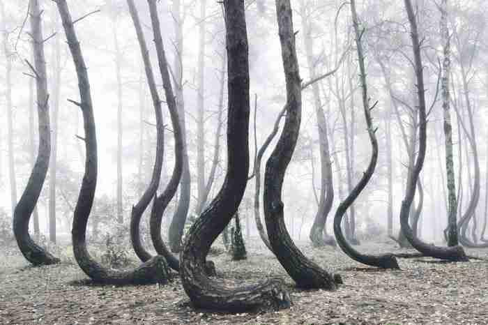 26 φωτογραφίες που αποδεικνύουν ότι ο κόσμος μας είναι απλά.. υπέροχος!