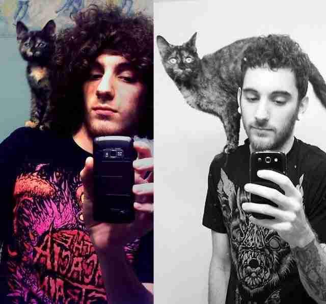 Τι αντίκτυπο έχει σε μια γάτα ένας ιδιοκτήτης που νοιάζεται; Δείτε 26 απίστευτες φωτογραφίες..