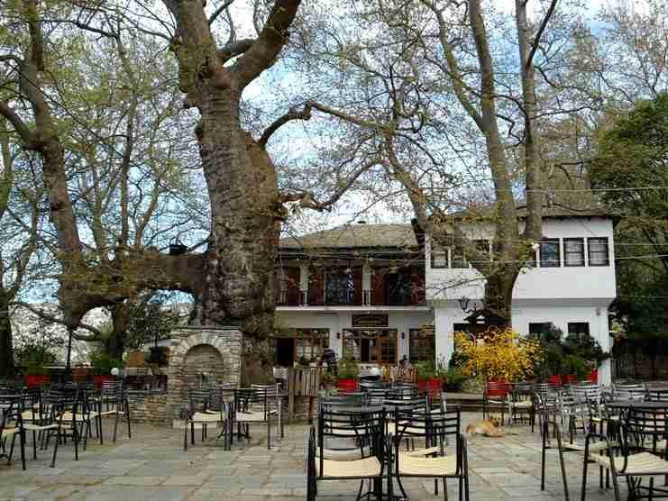 Πορταριά: Το χωριό στο Πήλιο που μοιάζει με ανθισμένο μπαλκόνι πάνω από το Βόλο!