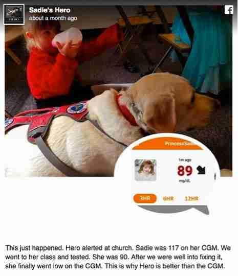 Όταν ο σκύλος τους το έκανε αυτό έμειναν έκπληκτοι. Σήμερα το αποκαλούν θεϊκή παρέμβαση