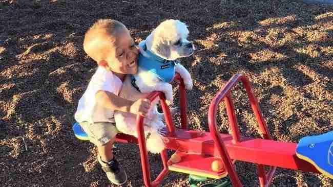 Αυτό το παιδί το κορόιδευαν για την εμφάνιση του. Ώσπου κάποια μέρα συνάντησε ένα σκύλο