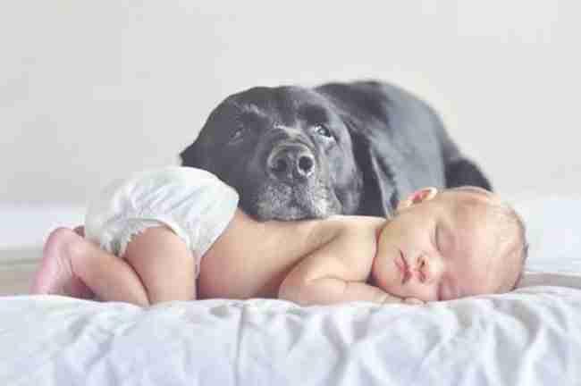 Μωρά αγκαλιά με τα σκυλάκια τους! Αυτές τις φωτογραφίες πρέπει να τις δείτε!