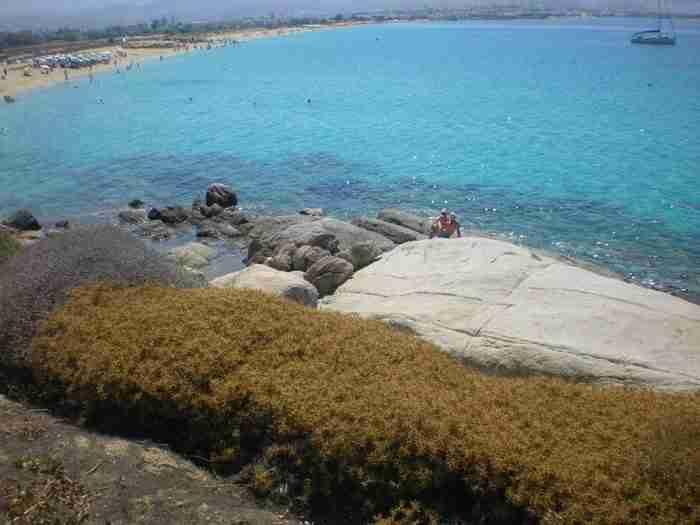 Η παραλία που έχει αποσπάσει τις περισσότερες ελληνικές και διεθνείς διακρίσεις βρίσκεται στη Νάξο