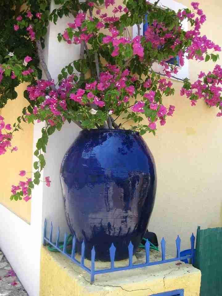 Άσσος, Κεφαλονιάς: Ένας καλοκαιρινός πίνακας ζωγραφικής!