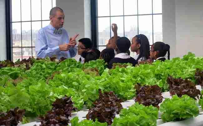 Αυτός ο δάσκαλος ανέβασε την απόδοση των μαθητών του μετατρέποντας την τάξη του σε.. φάρμα!