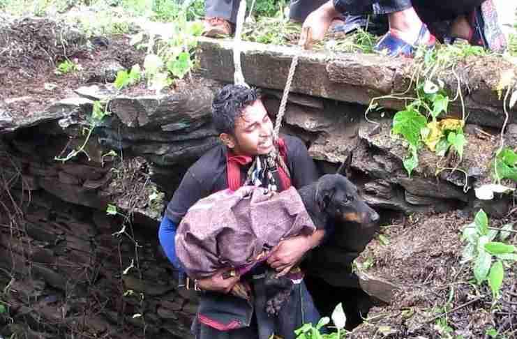 Σκύλος κλαίει από ανακούφιση μόλις συνειδητοποιεί ότι έρχονται να τον σώσουν!
