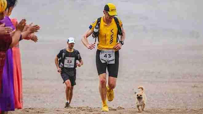 Αδέσποτο για 126 χλμ ακολουθούσε έναν μαραθωνοδρόμο. Όταν τερμάτισε, το υιοθέτησε!