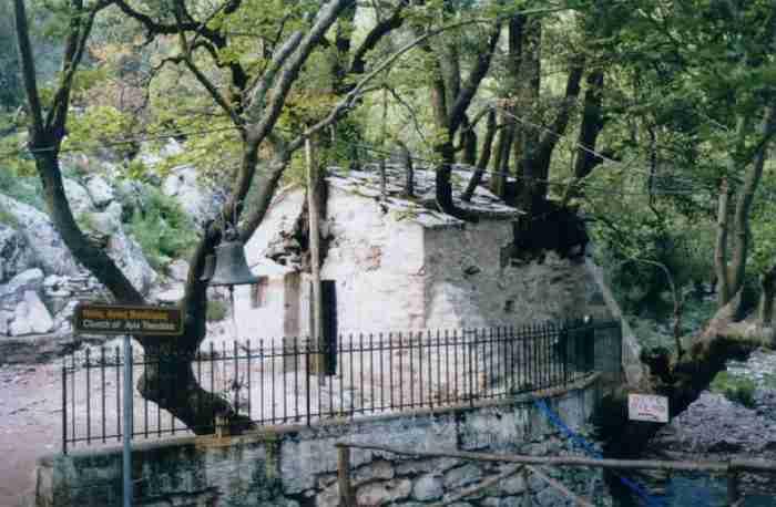 Ανεξήγητο θαύμα της φύσης: Το εκκλησάκι με τα 17 δέντρα στην Αρκαδία που μπήκε στο βιβλίο Γκίνες