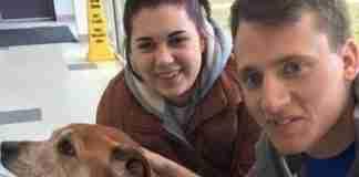 Ζευγάρι επισκέπτεται καταφύγιο ζώων για να προσφέρει. Φεύγοντας υιοθετεί έναν σκύλο 17 ετών
