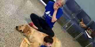 Όταν ένα αυτιστικό αγόρι, που δεν επιτρέπει σε κανέναν να τον αγγίξει, συναντά τον νέο του σκύλο