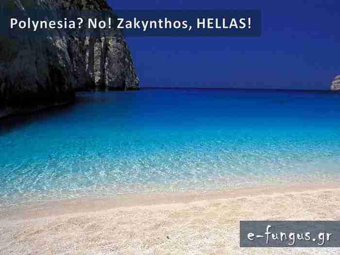 Υπάρχει Παράδεισος στη γη; Υπάρχει και βρίσκεται στην Ελλάδα! Ανακαλύψτε τον…