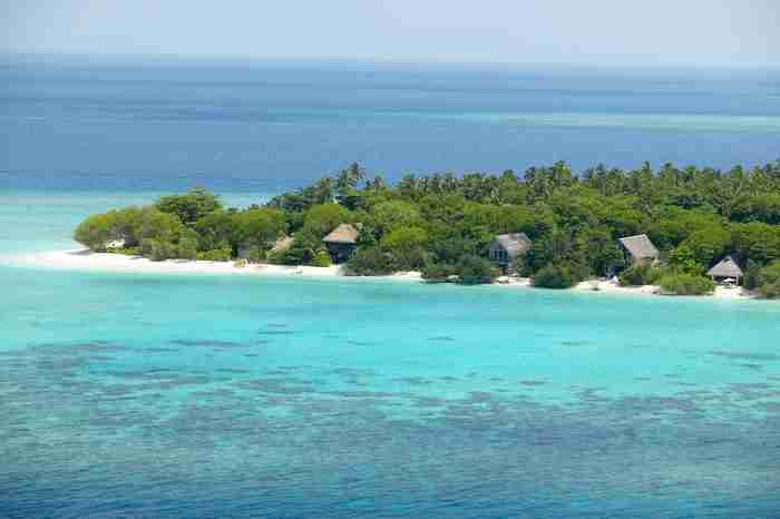 Σε αυτό το νησί των Μαλδίβων συμβαίνει κάτι μαγικό μόλις πέσει το σκοτάδι..