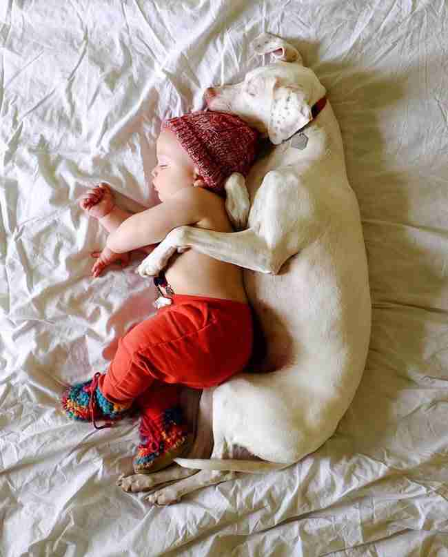 Κακοποιημένη σκυλίτσα φοβάται τους πάντες εκτός.. από το 11 μηνών μωράκι της νέας της οικογένειας